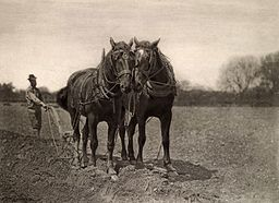 Peter Henry Emerson's At Plough, The End of the Furrow