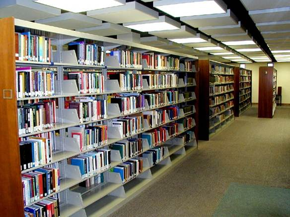 book on bookshelves in the Louis J. Blume Library