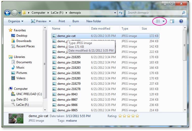1-windows_listview.jpg