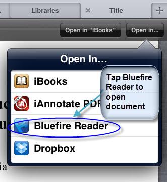 Springer Choose Bluefire Reader