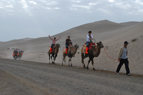 People riding camels on the silk road