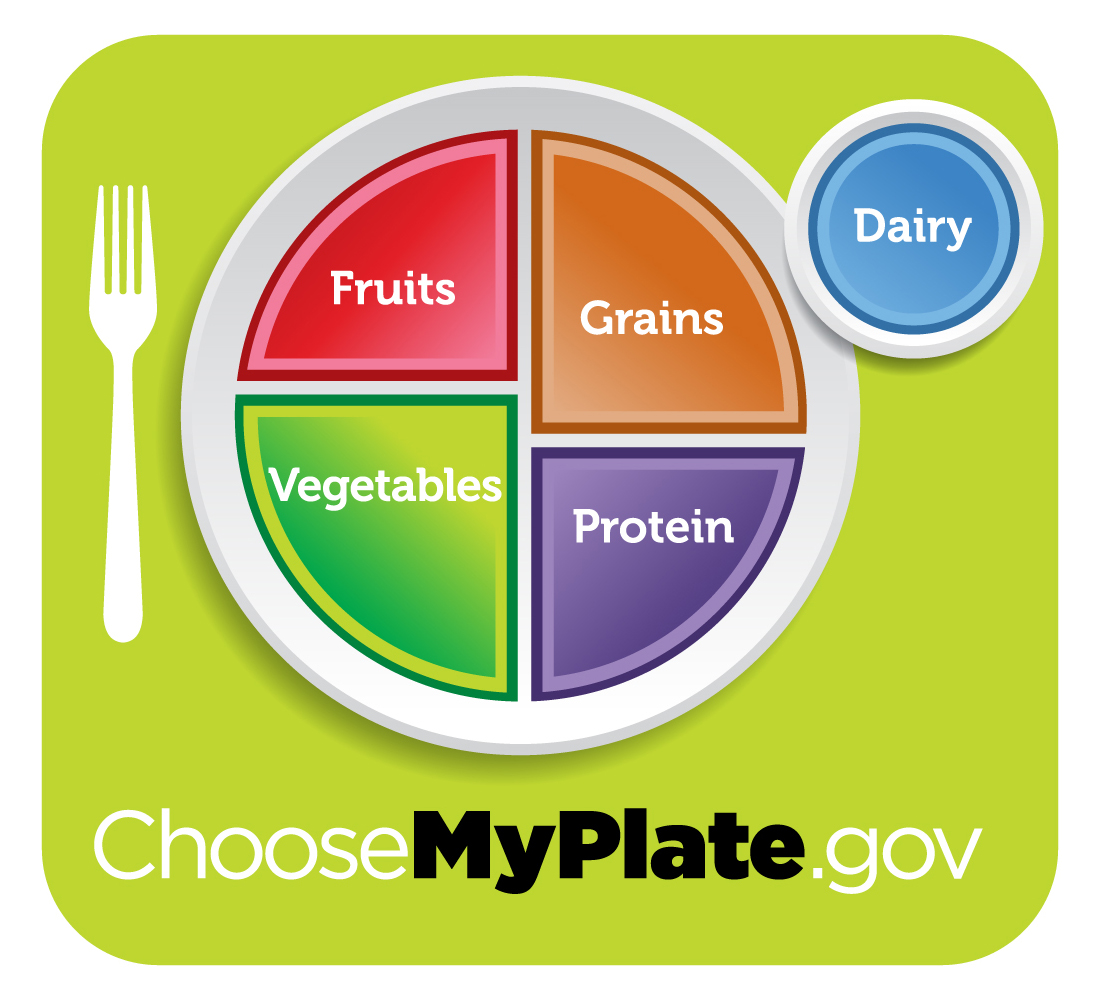 Myplate.gov. vegetables and fruit make up one half with protein and grains on the other