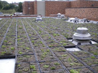 Mercyhurst College Green Roof