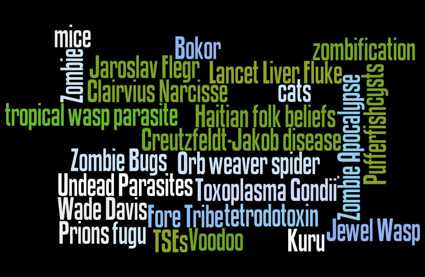 Word cloud based on Zombie vocabulary