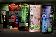 Exhibit with four banners and a sign
