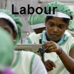 UNGC Labour