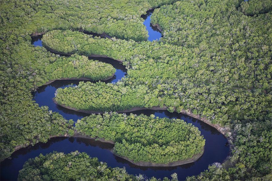 Intact Nature: Zambezi River