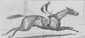 Illustration, black and white print: woodcut, of Darriwell and jockey running at Flemington.