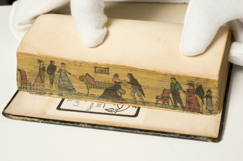 Image of a book with a fore-edge painting