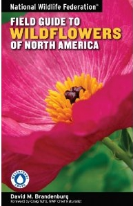 Field Guide to Wildflowers of the Southeast