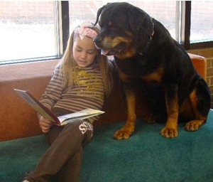 A therapy dog and those he or she helps