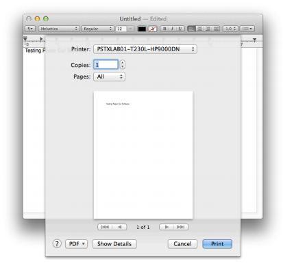 screenshot showing the print window open