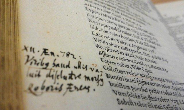 Image of the Dictionarium latinae lingust. Vol.3.
