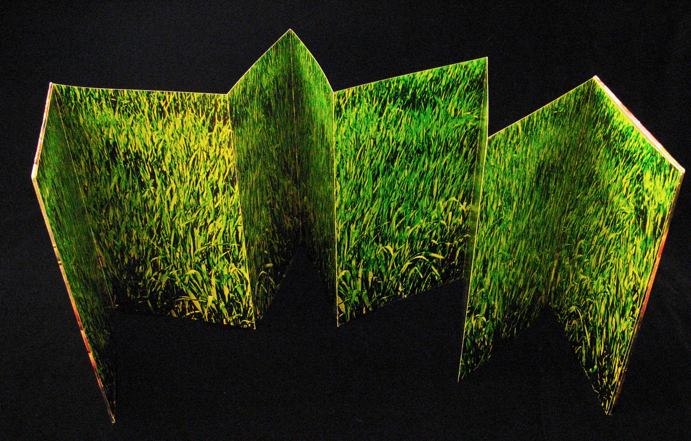 An accordion fold artist's book featuring a photo of grass.