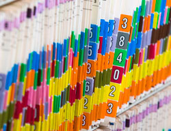 Picture of Tab Dividers for a filing system