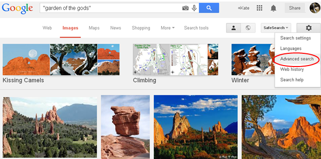 Screen shot of Google Image results for Garden of the Gods, and location of advanced search option under the gear icon