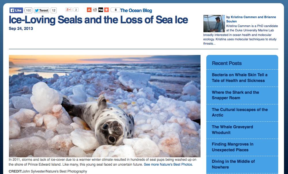 Screen shot of Ocean Blog webpage