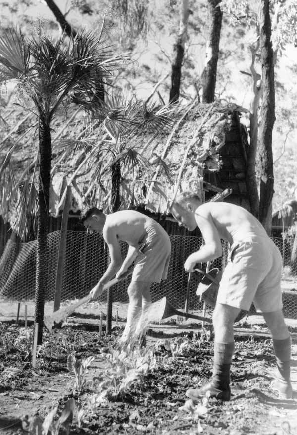 Lieut. J. D. KIDD (left) and Lieut. J. N. HAWKINS tend their garden of vegetables to supply the mess