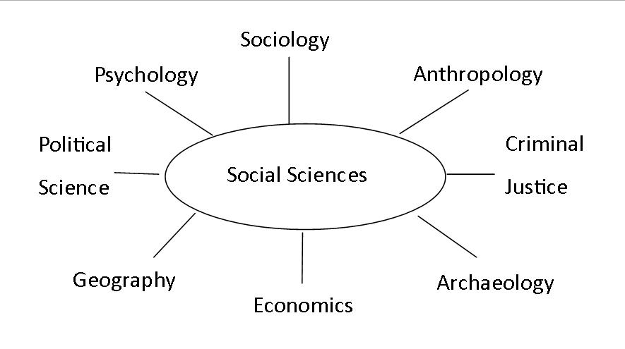 Social science disciplines chart