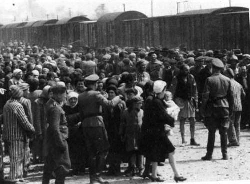 A large crowd of Jewish men, women, and children being contained and organized by SS Officers