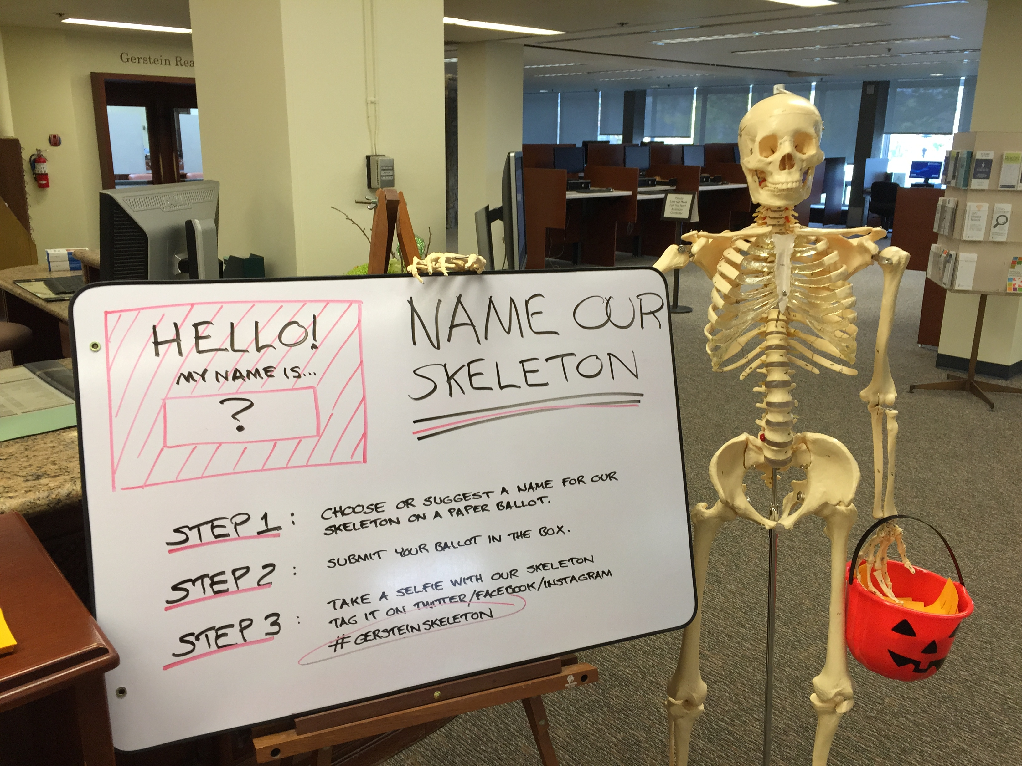 Gerstein skeleton holding orange pumpkin pail for votes. To the left is a board describing steps of how to name the skeleton